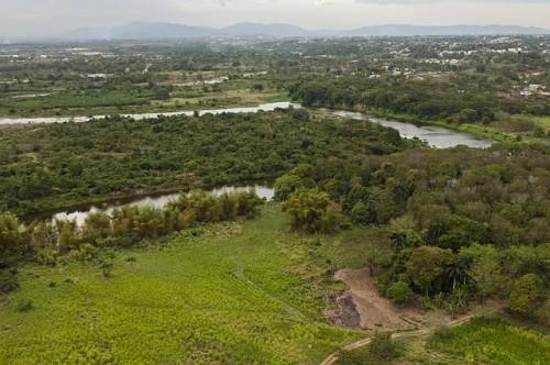 Promueve siembra de árboles en los Haitíses