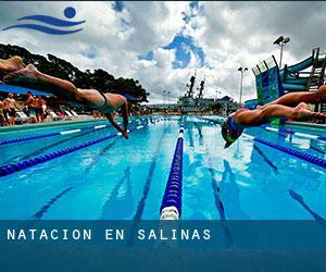 Federación de natación presenta proyecto para Los próximos cuatro años